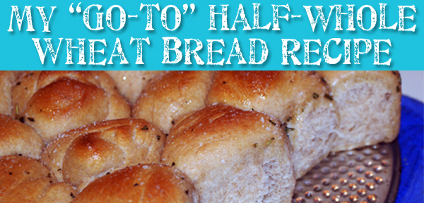 "My ""go-to"" half-whole wheat bread recipe with directions for rosemary rolls - from Muse of the Morning"