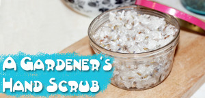 A Gardener's hand scrub tutorial from Muse of the Morning