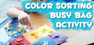 Color Sorting Busy Bag Activity Tutorial from Muse of the Morning