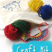 Hand Dyed Wool Yarn and Plastic Canvas Learn To Stitch Kit from Muse of the Morning