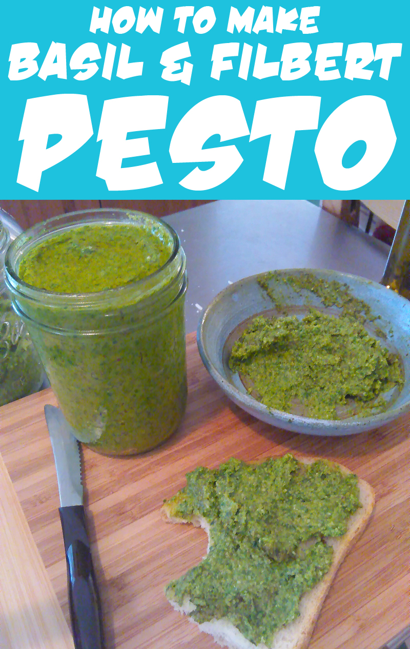 Basil and Filbert Pesto Recipe from Muse of the Morning